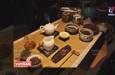 Drinking up on Vietnam's tea culture