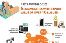 Six commodities with export value of over 10 bln USD