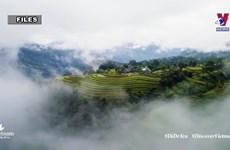 Vietnam plans to resume domestic tourism activities soon