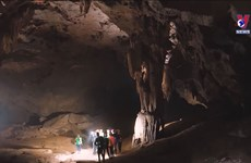 Quang Binh kick-starts tourism recovery