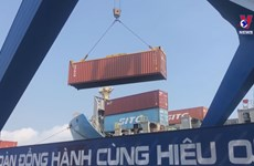 Vietnam on track to achieve 600 bln USD in foreign trade: Ministry