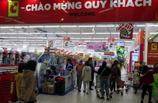 Vietnamese retail market – still a good pie for foreign giants