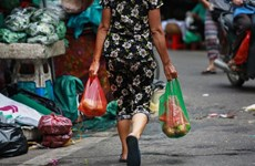 Vietnam takes actions to raise awareness towards no plastic waste