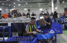 Vietnam gains 194.3 billion USD in export revenue in nine months