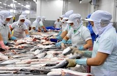 Good news for Vietnamese cat fish exporters