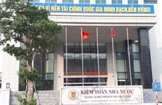 Vietnam develops environmental audit on par with int'l trend