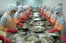 Shrimp exporters bring home 3.85 billion USD in 2020