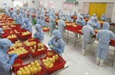Vietnam's export turnover exceeds 157.6 billion USD in H1