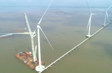 Mekong Delta attractive to renewable energy investment