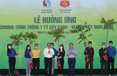 Planting trees to secure the future: Minister