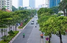 Autumn blankets Hanoi's streets with fragrance of white milk flowers