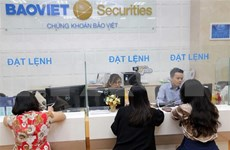 Study looks into protecting minority shareholders in Vietnamese context