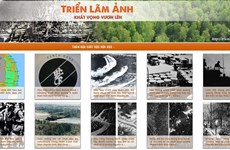 Online photo exhibition: a panorama of AO disaster