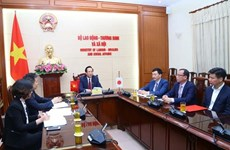 Vietnam, Japan cooperate to address arising issues related to trainees