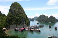 Quang Ninh develops high-quality tourism services on Ha Long Bay