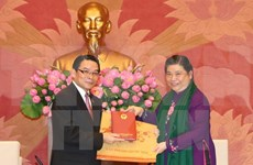 Friendship groups asked to promote Vietnam-Laos ties