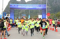 Over 800 athletes to race at Ha Long Bay Heritage Marathon
