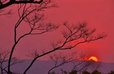 Fire on the mountain: sunset tours in Son Tra
