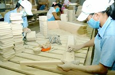 Japanese small enterprises eye Vietnam investment