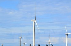 Competitive power market key to promoting renewables