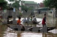Heavy rains wreak havoc in central provinces