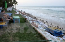 Project hoped to save Hoi An's coast from erosion