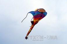 Vietnam Art Kite Festival opens in Vung Tau
