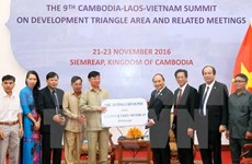 Rice aid delivered to Vietnamese in Cambodia