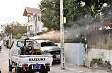 Khanh Hoa beefs up prevention against Zika virus, dengue