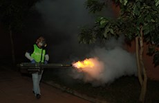 HCM City using thermal foggers to kill mosquitoes
