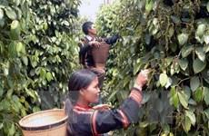 Vietnam seeks more ASEAN trade