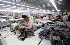 Vietnamese firms invest in textile, dyeing