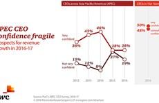 Vietnam CEOs show confidence