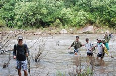 Citizen patrols: good for forests, good for farmers