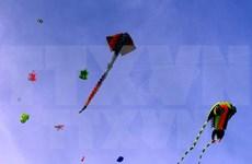 Annual kite fest takes wing in Vung Tau
