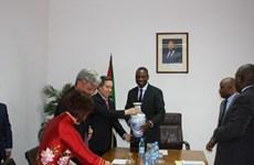 Party economic official visits Mozambique