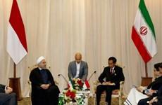 Indonesia, Iran boost cooperation