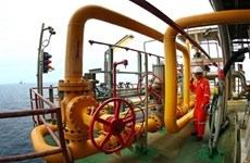PetroVietnam tops list of 500 lead earners