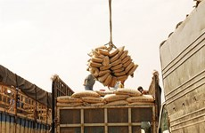 VN cement export estimated at 15 million tonnes