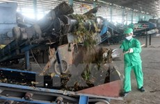 Can Tho licenses 47-million-USD waste-to-energy plant
