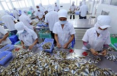 EU trade pact to generate new momentum for Vietnam