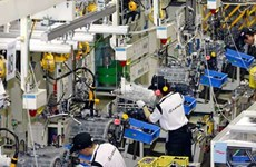 Binh Duong's industrial development index sees slight drop