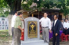 Quang Nam's gold apple trees recognised as national heritages