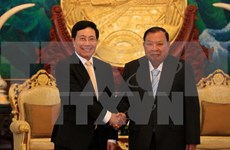 Vietnam's Foreign Ministry to keep close ties with Lao counterpart