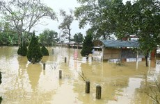 Government supports eight flood-hit localities