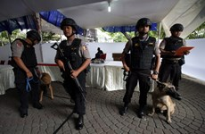 Indonesia foils New Year attack plot