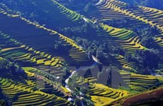 Northern Vietnam named Forbes' cheapest travel place