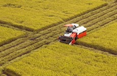 SciTech – key solution to agricultural restructuring