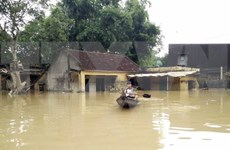 Government gives further flood relief to Binh Dinh province