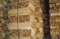 Chinese buyers depleting Vietnam's raw lumber